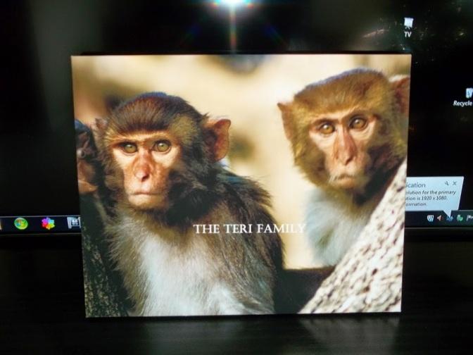 12222014 Monkeying Around (Decoration)