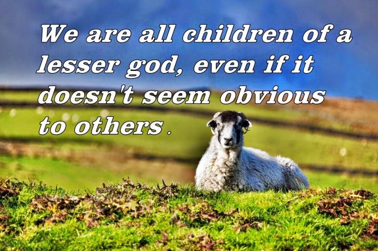 Lying Sheep(1)
