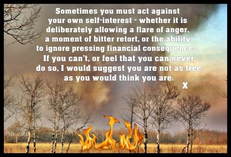 prairie-fire-23441288984680Zt4