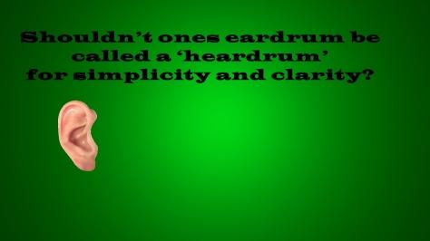 heardrum