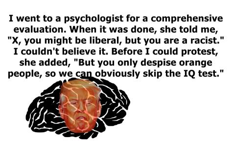 racist trump.png